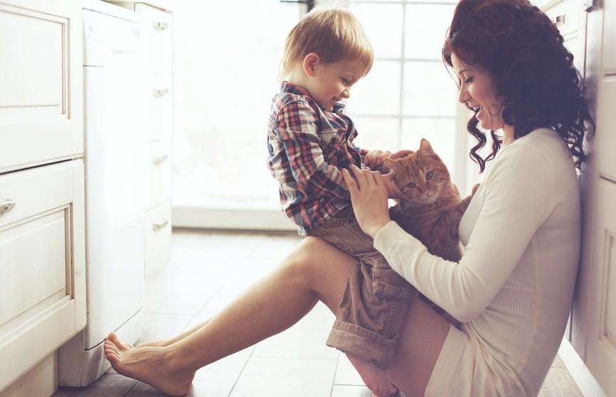 Кошка хотела занять место ребенка, который спал у мамы на руках. Посмотрите, как она пытается вытеснить его! (ВИДЕО)
