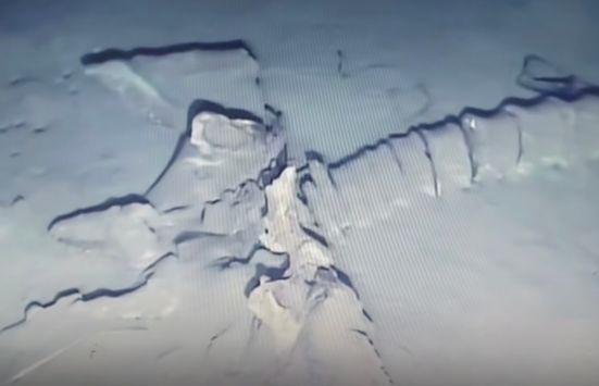 Дайвер обнаружил что-то похожее на кости неизвестного существа на дне океана