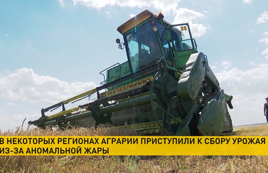 Белорусские аграрии приступают к сбору урожая