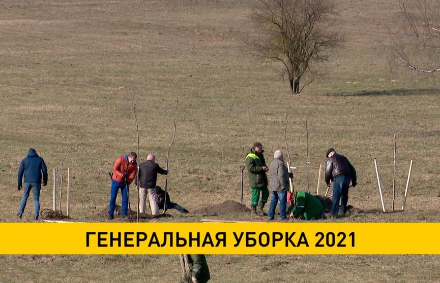 В Беларуси проходит «генеральная уборка»-2021