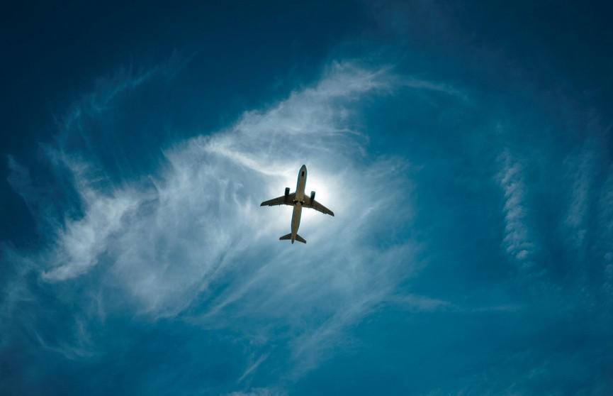 Мужчину арестовали за то, что он купил билет на самолет и не воспользовался им