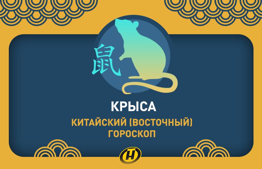 Крыса: Китайский (Восточный) гороскоп, характеристика знака, совместимость