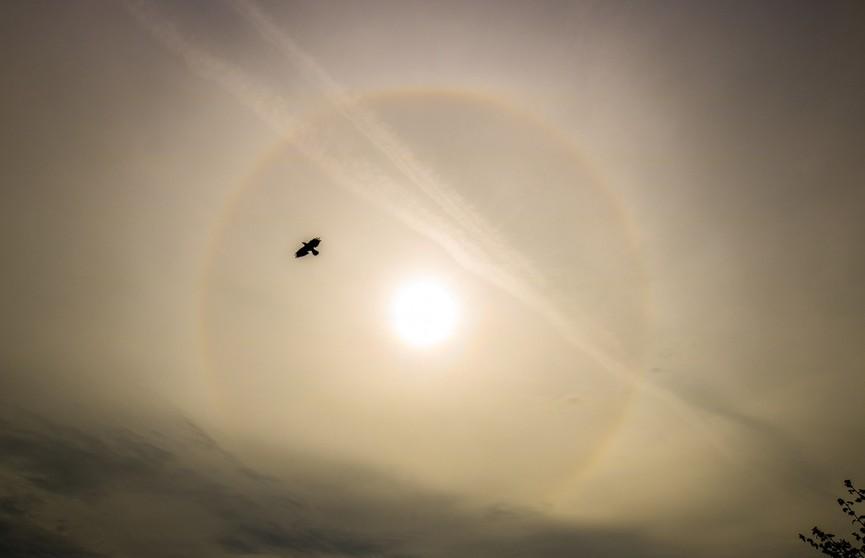 Необычное природное явление: в небе над Ратомкой образовалась радуга вокруг солнца