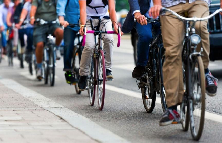 День без автомобиля в Беларуси отметят велопробегом и бесплатным проездом для автомобилистов