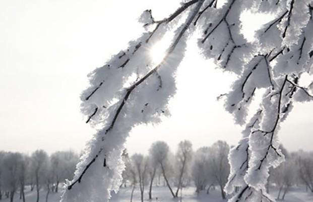 До -16°С ожидается 10 марта в Беларуси