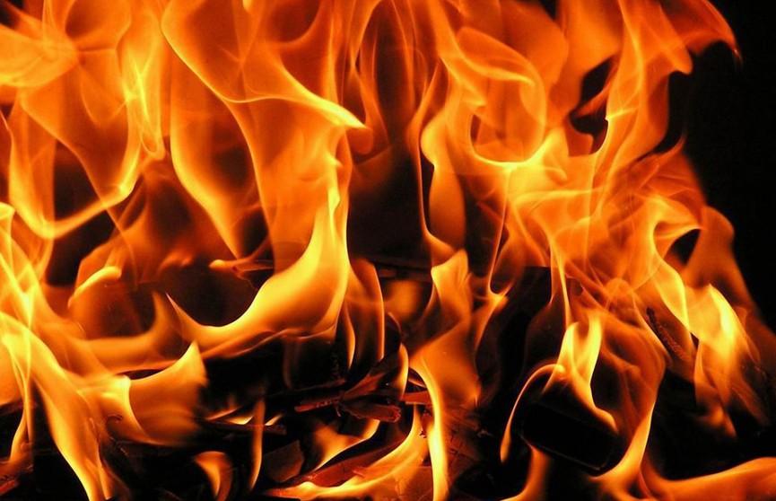 Две тонны семян рапса сгорели в Островецком районе
