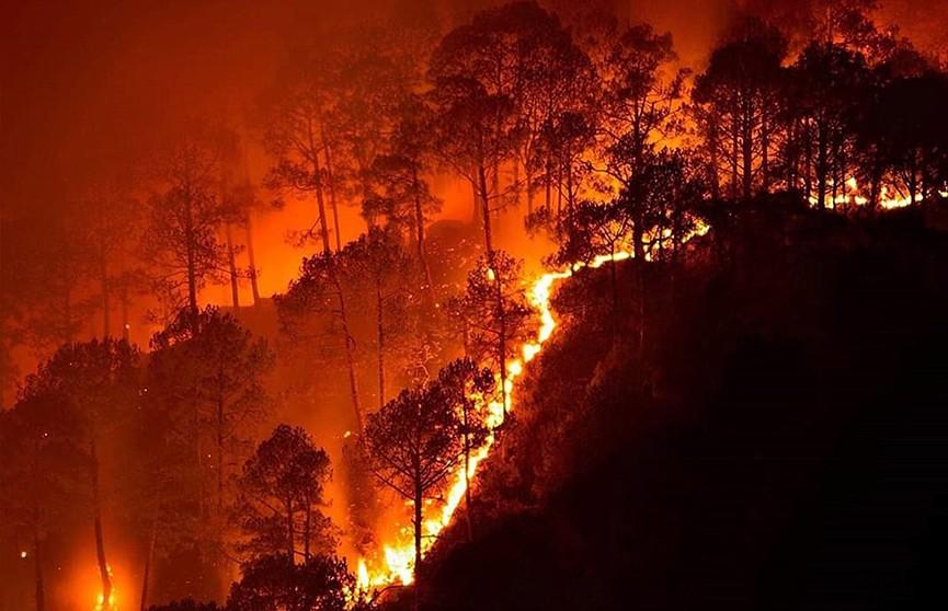 Извержение вулкана спровоцировало мощные лесные пожары на Сицилии