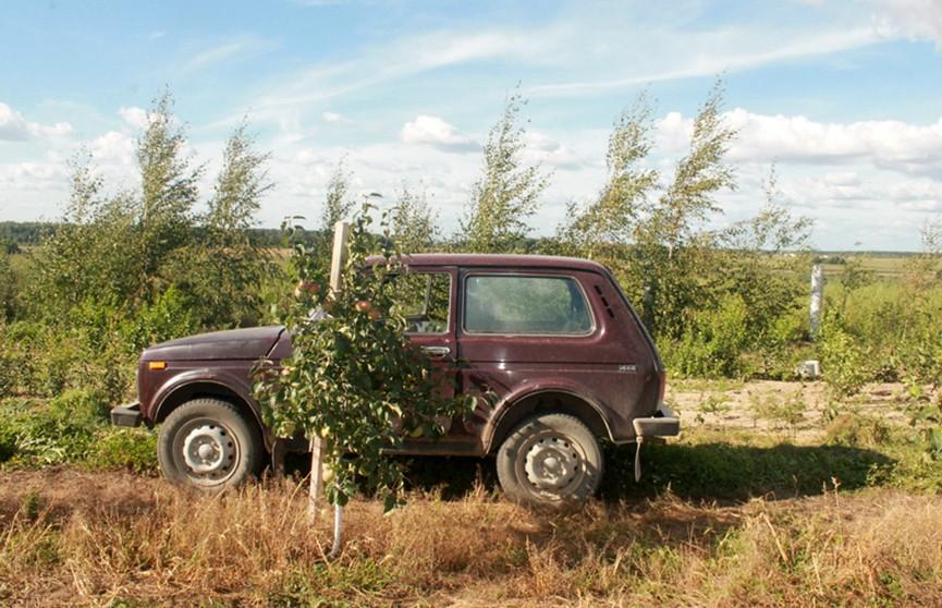 Агроном на автомобиле «ВАЗ» наехала на женщину-садовода