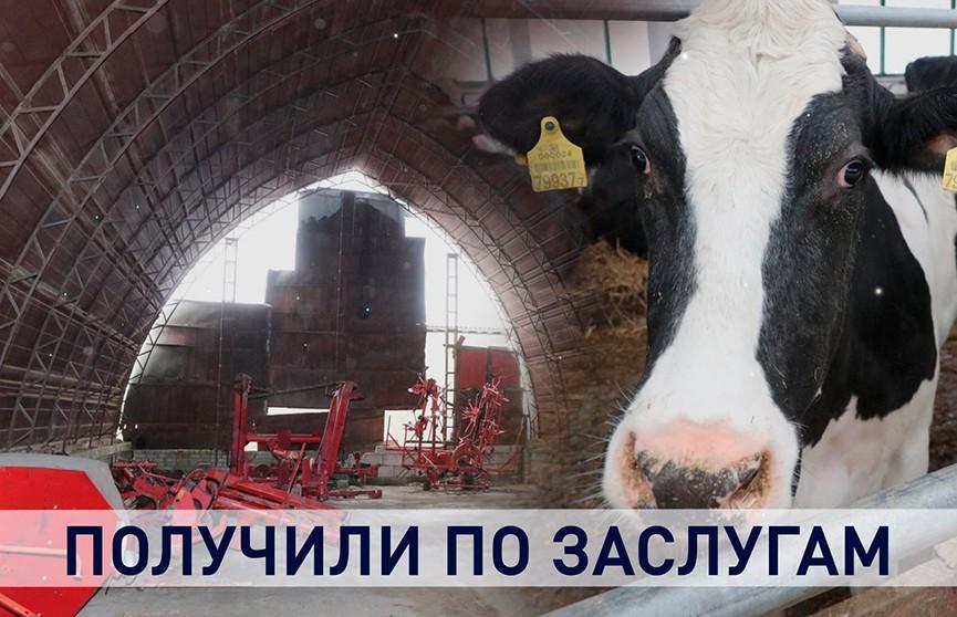 Получили по заслугам?! Итоги рабочей поездки Лукашенко в Могилёвскую область