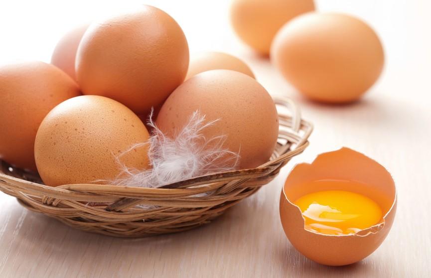 Экологически чистые яйца оказались токсичными в магазинах Бельгии
