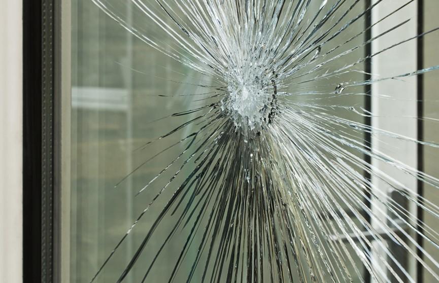 Минчанину запретили ехать в троллейбусе с бойцовской собакой без намордника. Мужчина в отместку разбил стекло в транспорте