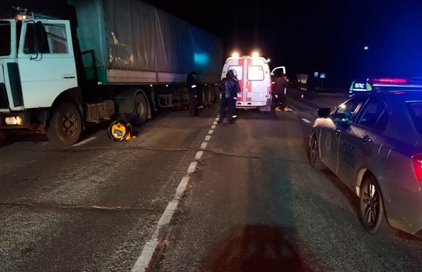 Грузовик сбил пешехода в Славгородском районе