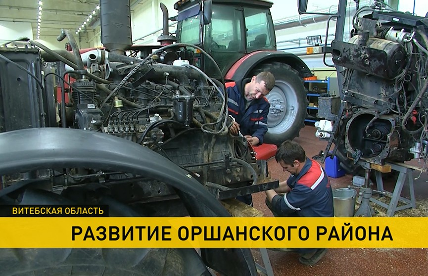 Экономические привилегии Оршанского региона дали ускоренное развитие сельского хозяйства, бизнеса и крупных предприятий