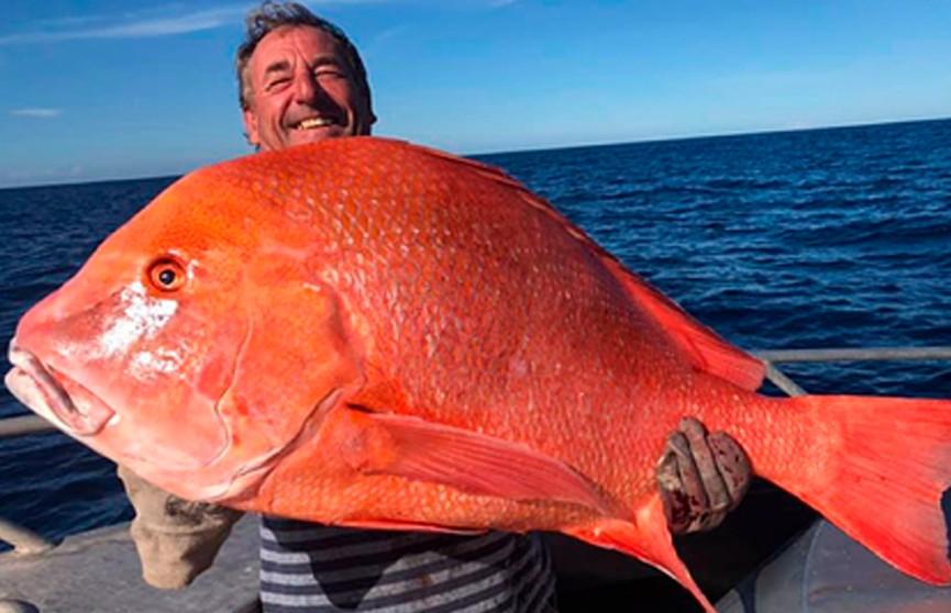 Мужчина поймал самую большую рыбу в жизни и пожертвовал ее науке