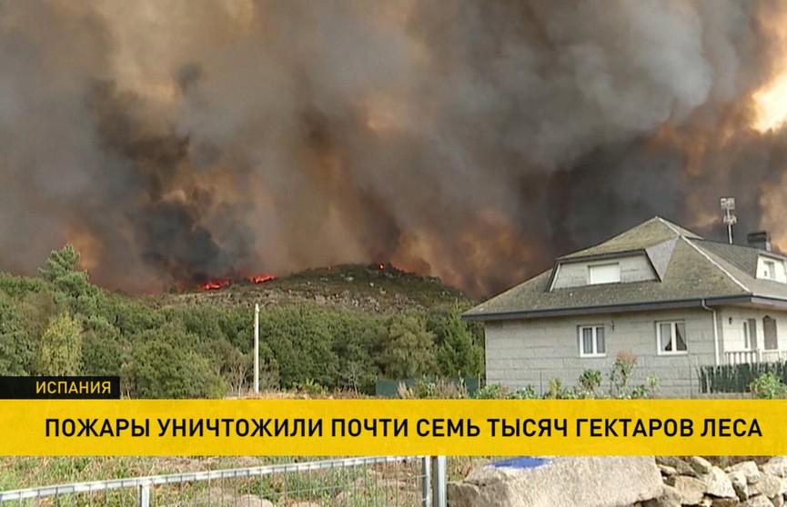 Пожары в Испании: уничтожено почти 7 тыс. гектаров леса