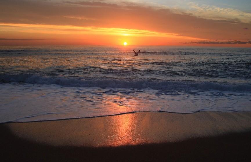 Воды Черного моря окрасились в красный цвет (ВИДЕО)