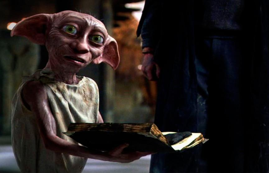 Добби? Существо, похожее на эльфа из фильмов про Гарри Поттера, попало на видео в США