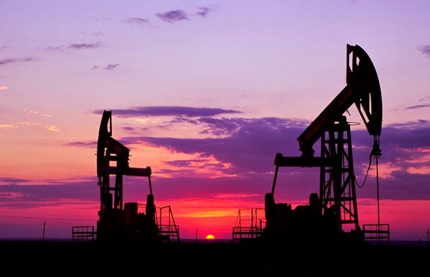 Из-за коронавируса цены на нефть обвалились до 13-месячного минимума