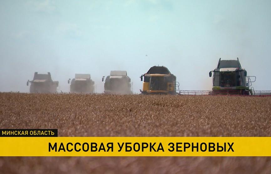 Уборочная-2021: аграрии трудятся в экстремальных условиях