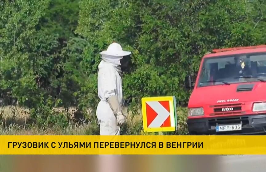 Грузовик с ульями перевернулся в Венгрии. На свободе оказались тысячи пчел