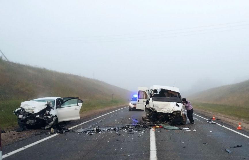 В Логойском районе водитель уснул за рулем и выехал на встречную полосу