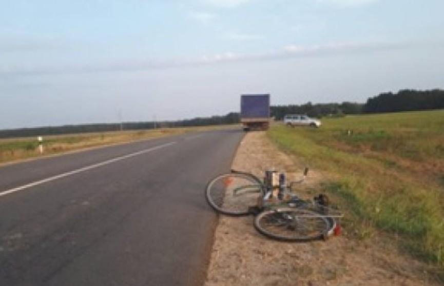 Грузовик сбил велосипедиста в Малоритском районе