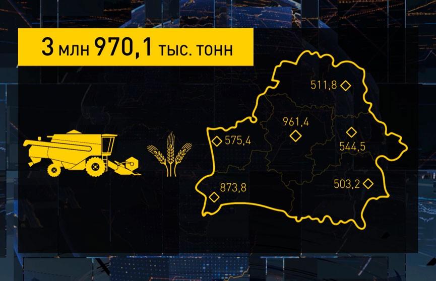 Минсельхозпрод: в стране собрано почти 4 миллиона тонн зерна