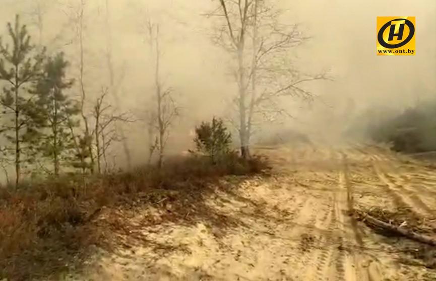 Военный полигон горел под Гродно