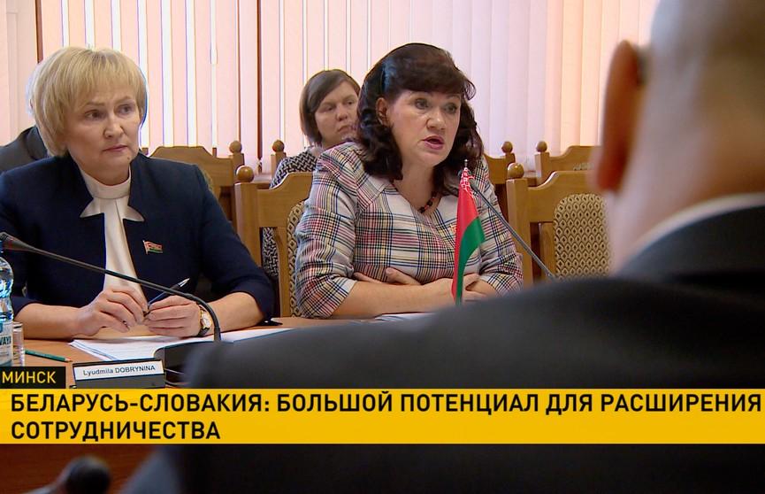 Парламентарии Беларуси и Словакии обсудили перспективные направления сотрудничества