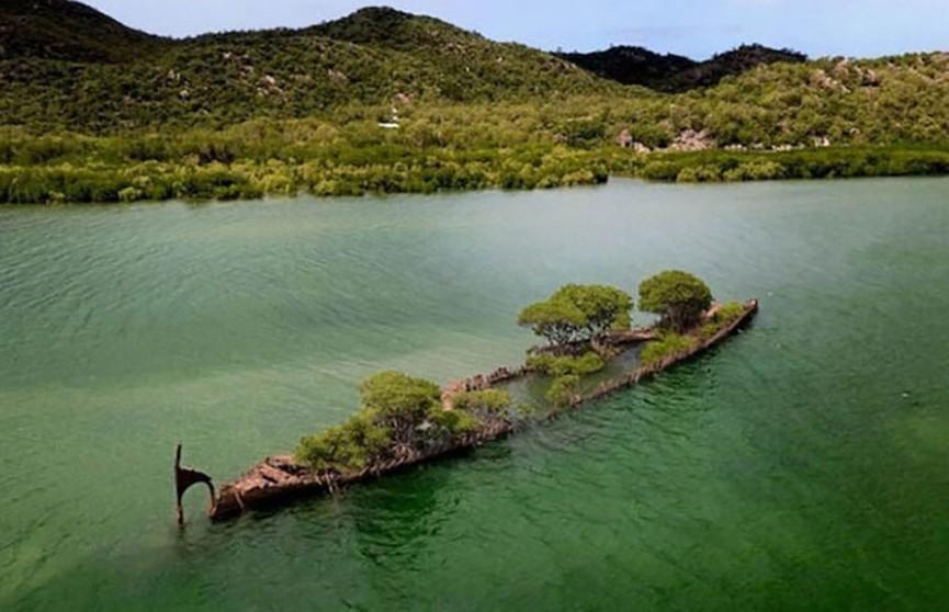 Пароход, превратившийся в остров, обнаружили недалеко от Австралии