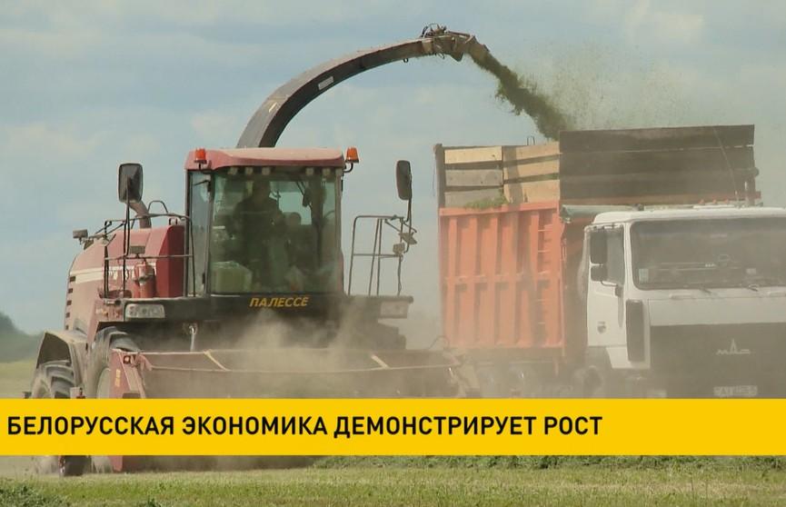 Белорусская экономика растет