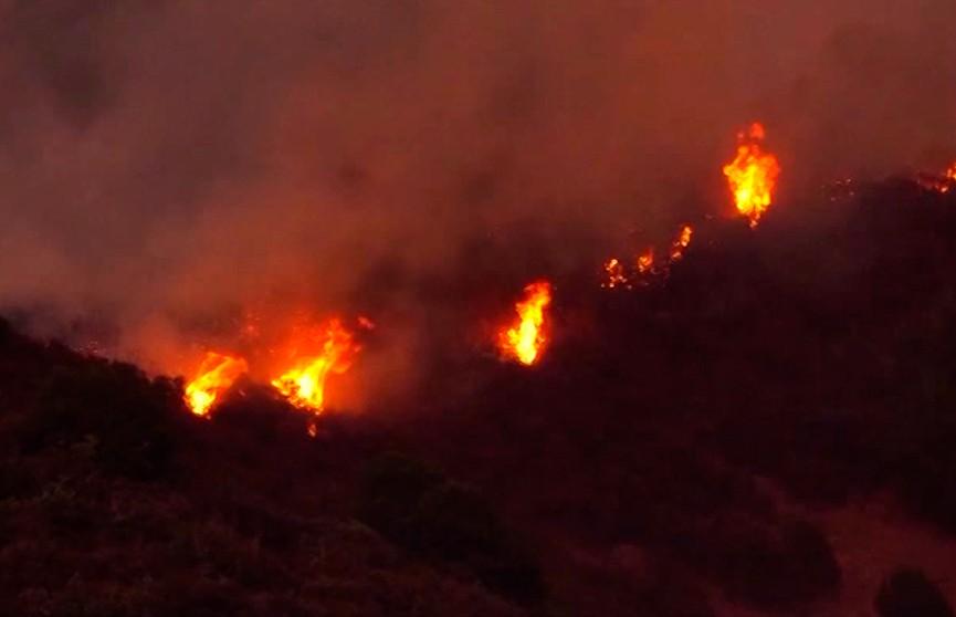 Лесные пожары в Калифорнии, есть жертвы