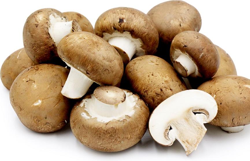 Белорусские грибочки. В Щучине открылось производство шампиньонов в промышленных масштабах