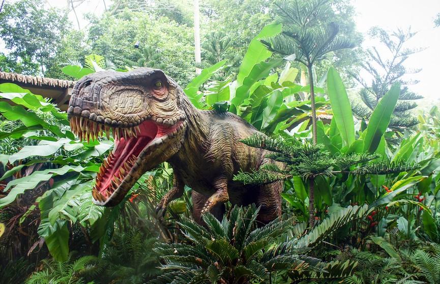 Женщина уверена, что к ней во двор забегал динозавр