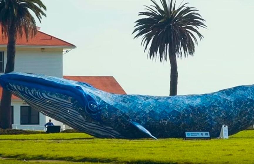 Гигантского кита из переработанного пластика сделали в США