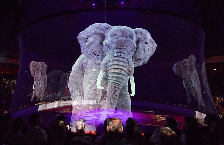 В немецком цирке вместо животных выступают голограммы – и это выглядит очень эффектно (ФОТО и ВИДЕО)