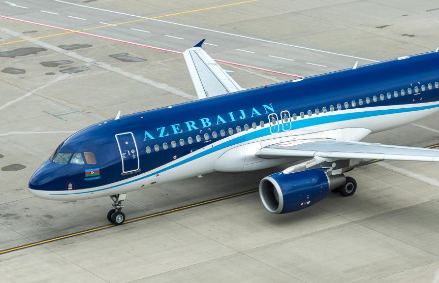 Летевший из Баку в Москву самолет столкнулся со стаей птиц