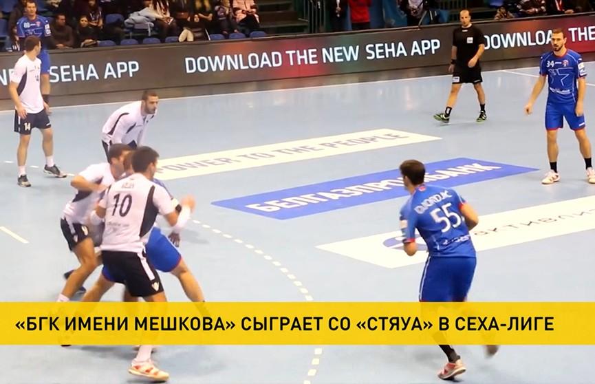 БГК имени Мешкова в матче SEHA-лиги примет румынский клуб «Стяуа»