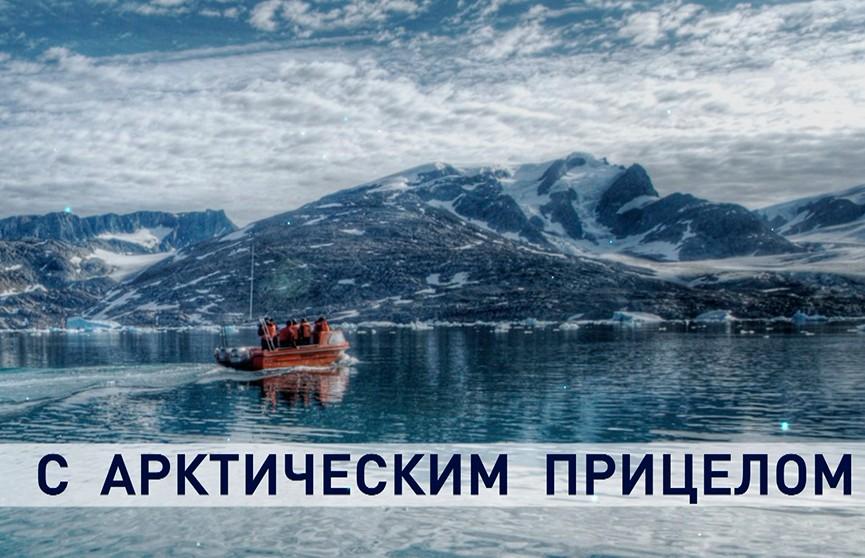 С арктическим прицелом