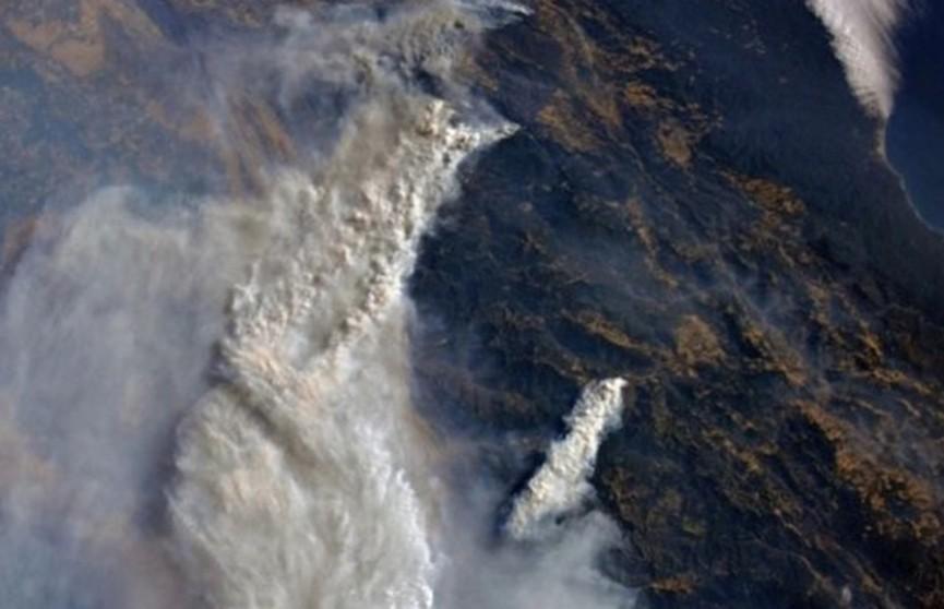 Дым виден из космоса: возросла площадь лесных пожаров в Калифорнии
