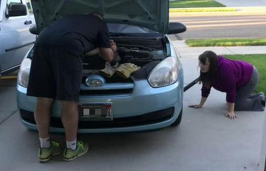 Котёнок проехал 27 километров под капотом автомобиля