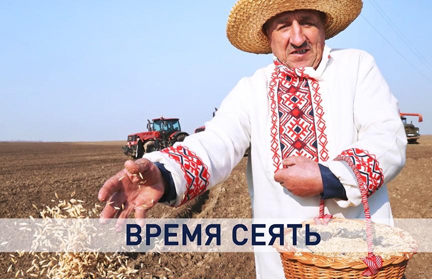 В Беларуси идут весенне-полевые работы. Зачем нужен контроль в сфере АПК и продовольственной безопасности?