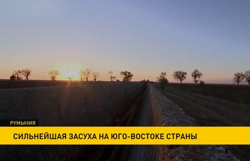 Румыния переживает сильнейшую засуху