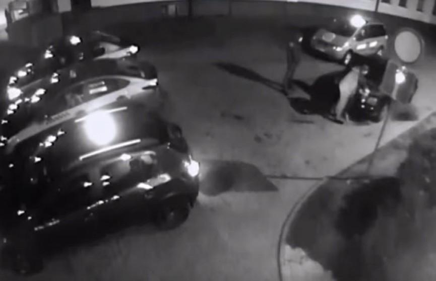 Мужчину избили возле ночного клуба в Гродно и вывезли в багажнике за город