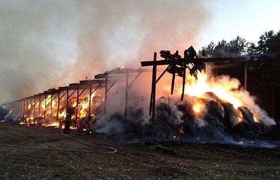 340 тонн сена уничтожил огонь в Рогачёвском районе