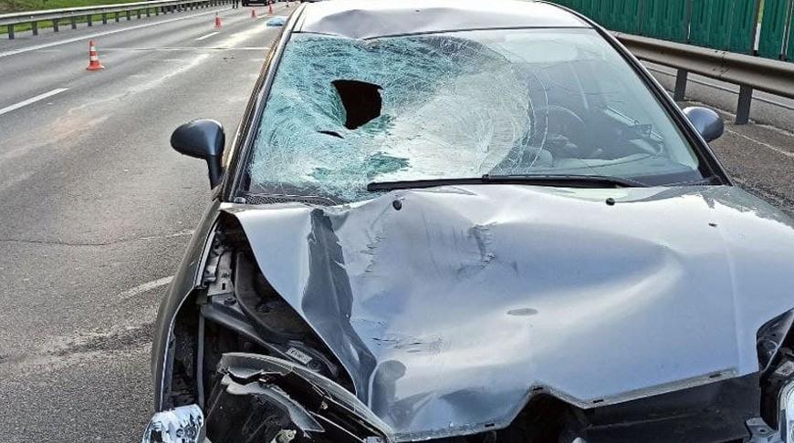 Автомобиль насмерть сбил пешехода на Логойском тракте в Минске