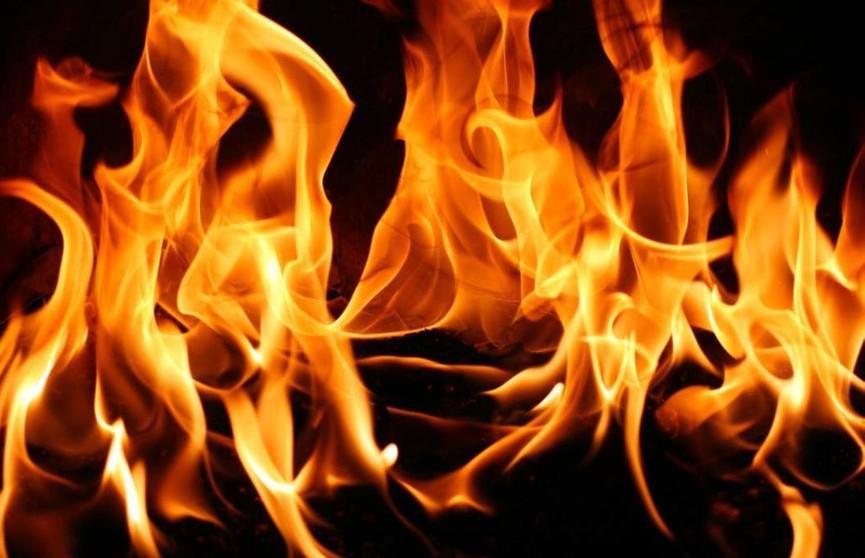 Предприниматель погиб на пожаре в Быхове