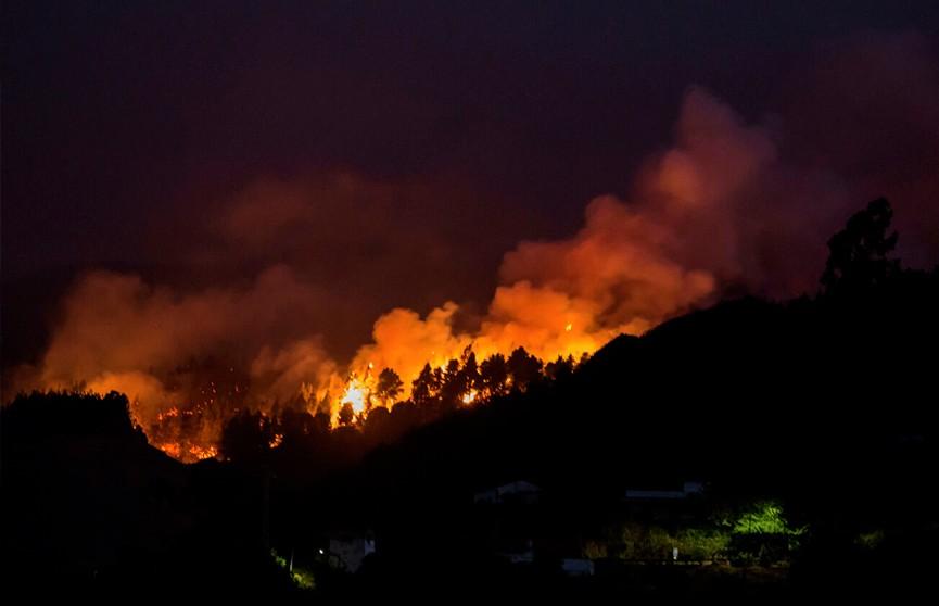 Лесные пожары бушуют на Канарских островах