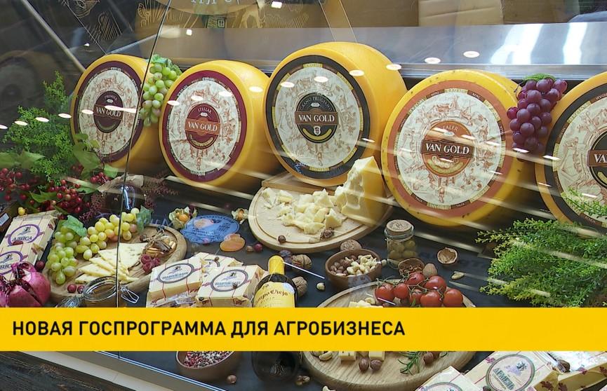 Госпрограмму по поддержке агробизнеса запустят в Беларуси