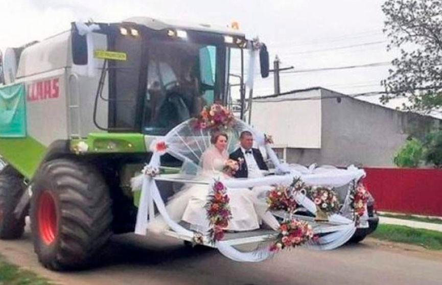 Свадьба по-русски: 20 смешных фото